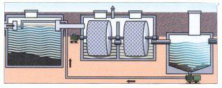 biorotor.jpg