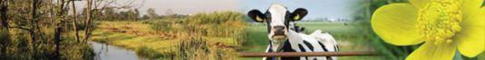 banner-biodiversiteit.jpg