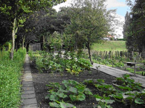 land en tuin 5